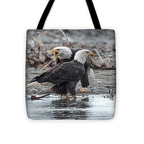 eagle-pair16x16.jpg