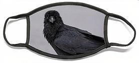 1-raven-david-kirby.jpg