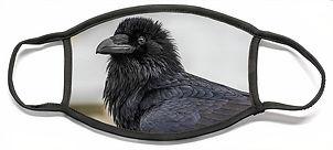 raven-4-david-kirby.jpg