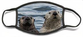 pair-of-otters-david-kirby.jpg