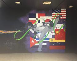 Graffiti - World Baseball Classic #1