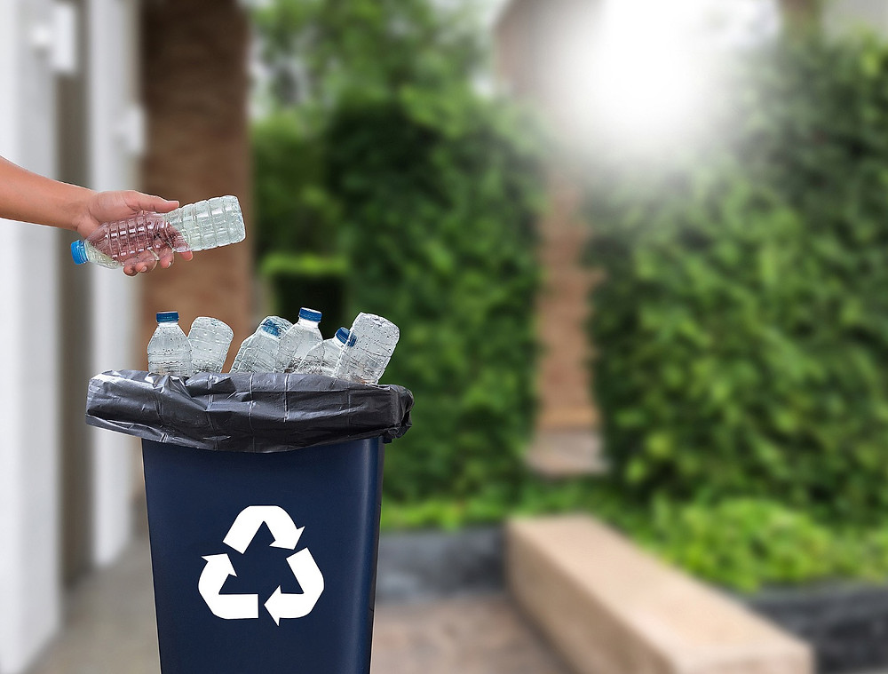 Eco Alternatives To Plastic