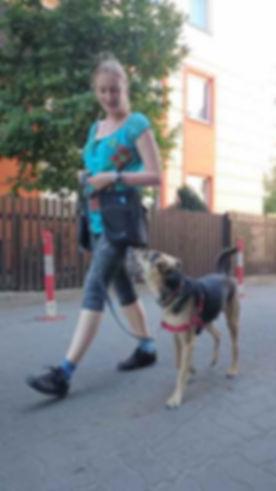 Marta Dziedzic psycholog zwierząt terapia psów