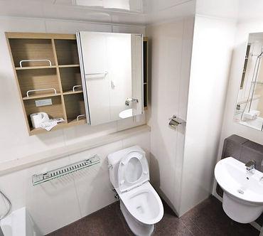 toilet-1024x920.jpg
