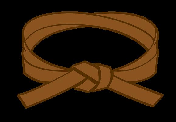 Brown Belt Grading