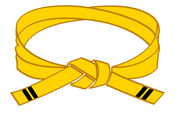 Yellow II Belt Grading