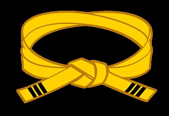 Yellow III Belt Grading