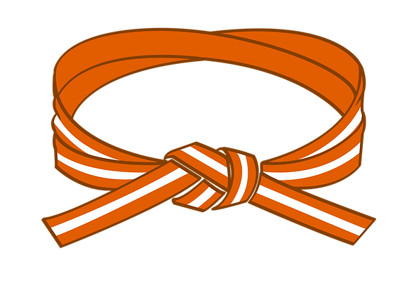 Orange/White Belt Grading