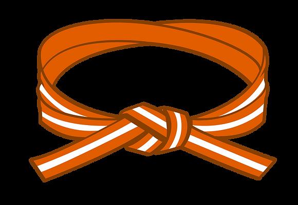 Orange/White Belt Grading