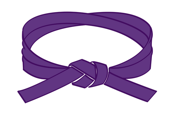 Purple Belt Grading