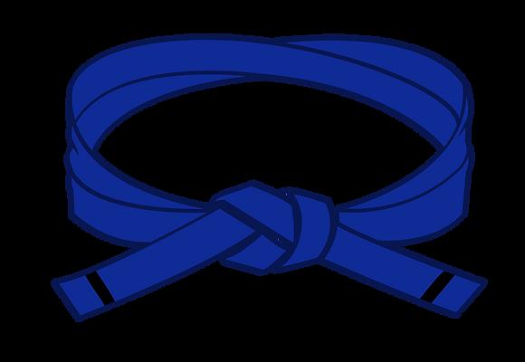 Blue I Belt Grading
