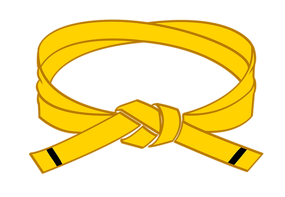 Yellow I Belt Grading (Wasps Integration)