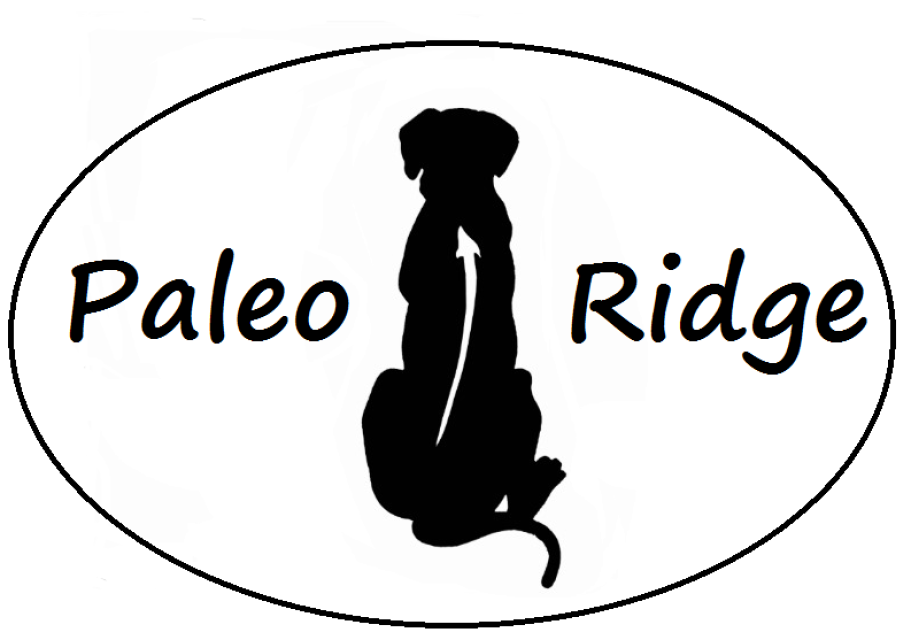 New Paleo Ridge Flavours in Store Now
