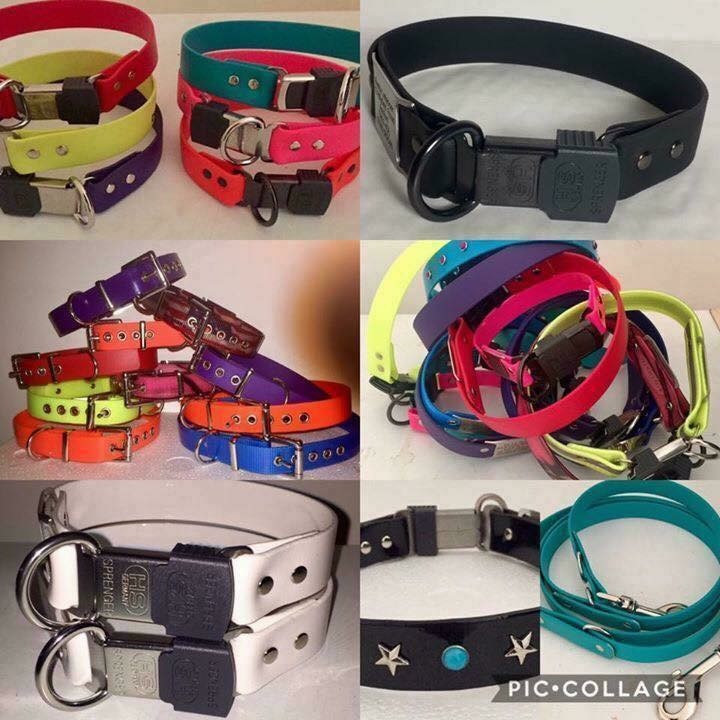 Exciting News Biothane Bert's Collars & Leads coming to Raw Galore Ltd
