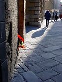Christmas in Sienna