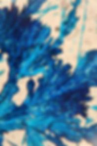Blue Crystal II 2014