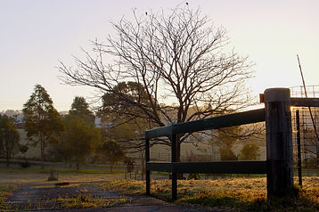 Jens Lichtenberger photography - Bellingen Sunrise 4 July 2002