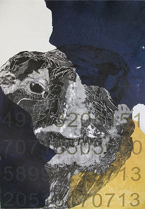Coding the Future - Origin Galapagos Tor