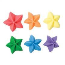 Bright Star Assortment
