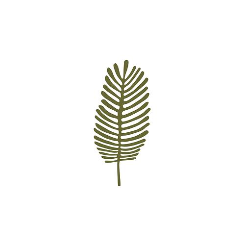 Olívia