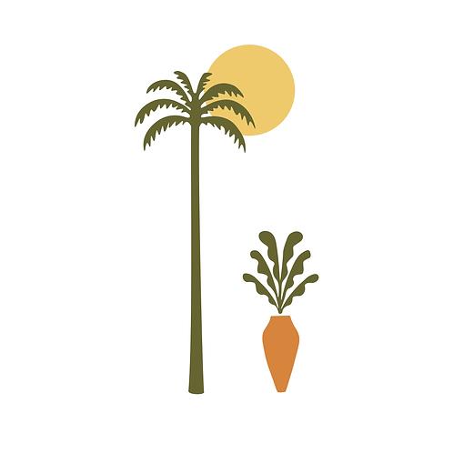 Conjunto Tropical