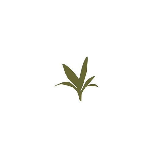 Mini Terracota #1