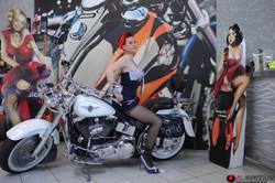 Pin-up Harley-Davidson Montpellier 4