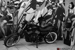 Pin-up Harley-Davidson Montpellier 7