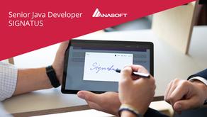 Senior Java Developer Signatus