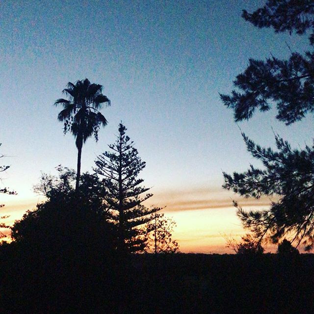 THE SUNSET AT MOUNT OPHIR ESTATE