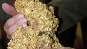 7.85 kg bongkahan emas. Februari 2015.