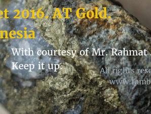 Dideteksi dengan AT Gold (Detektor Emas).