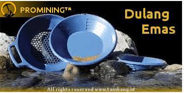 image-peralatan-piring-dulang-emas-min_o