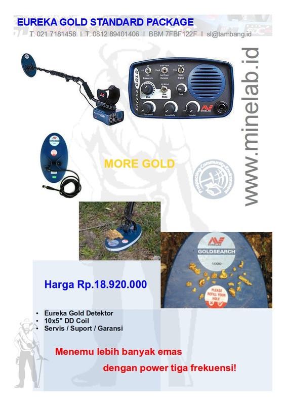Gold Monster1000 Minelab