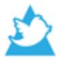Promining Twitter