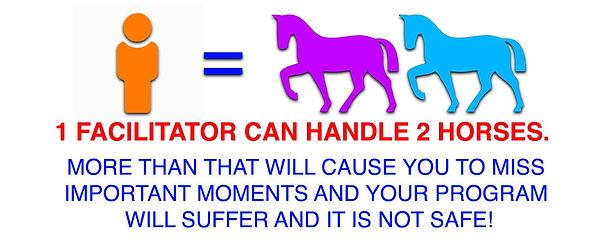1 facilitator 2 horses.jpg