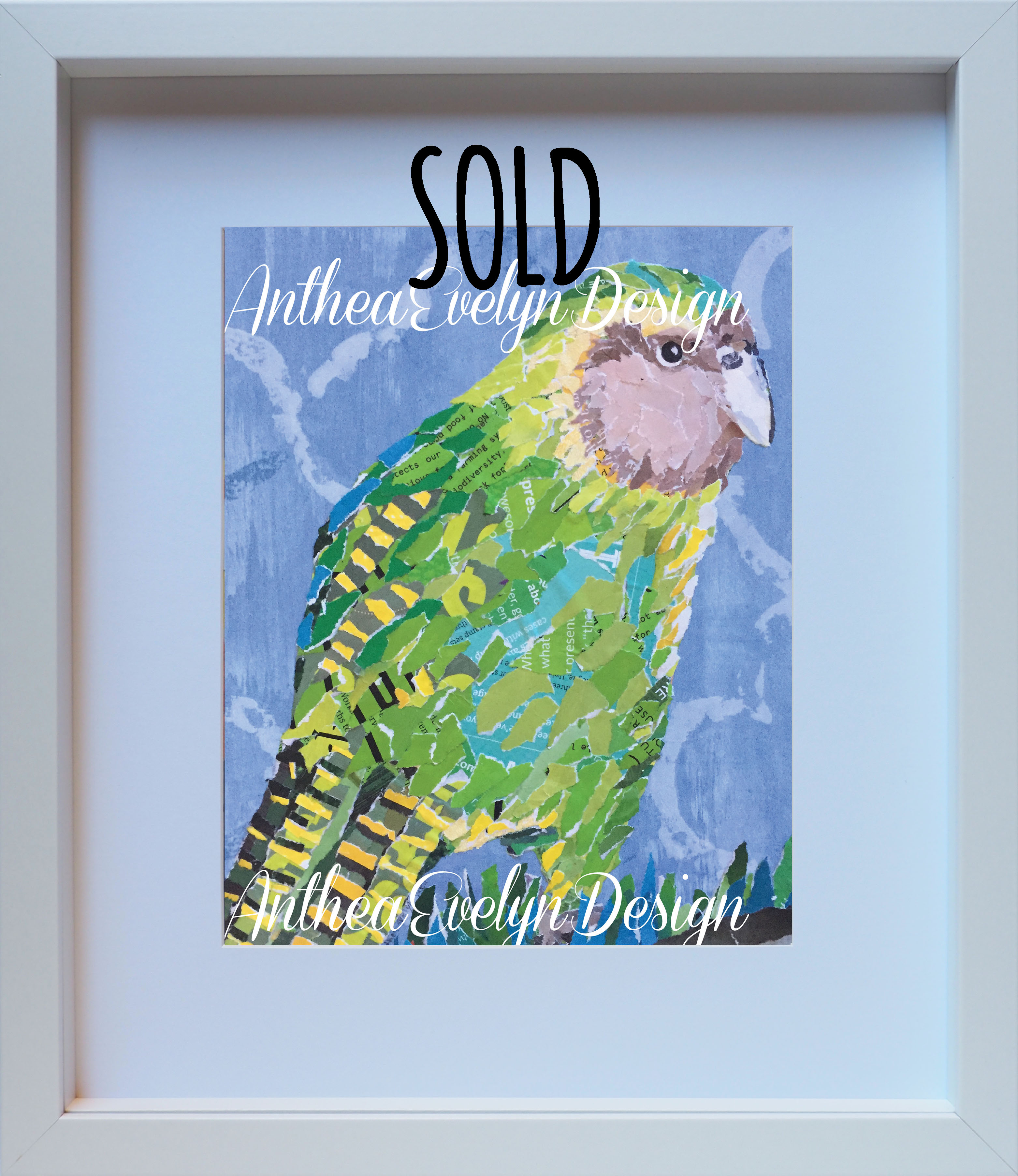 P1039 Kakapo SOLD