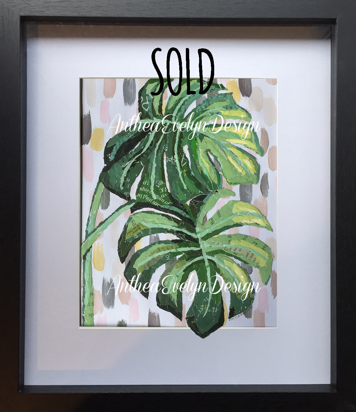 P1076 Monstera SOLD