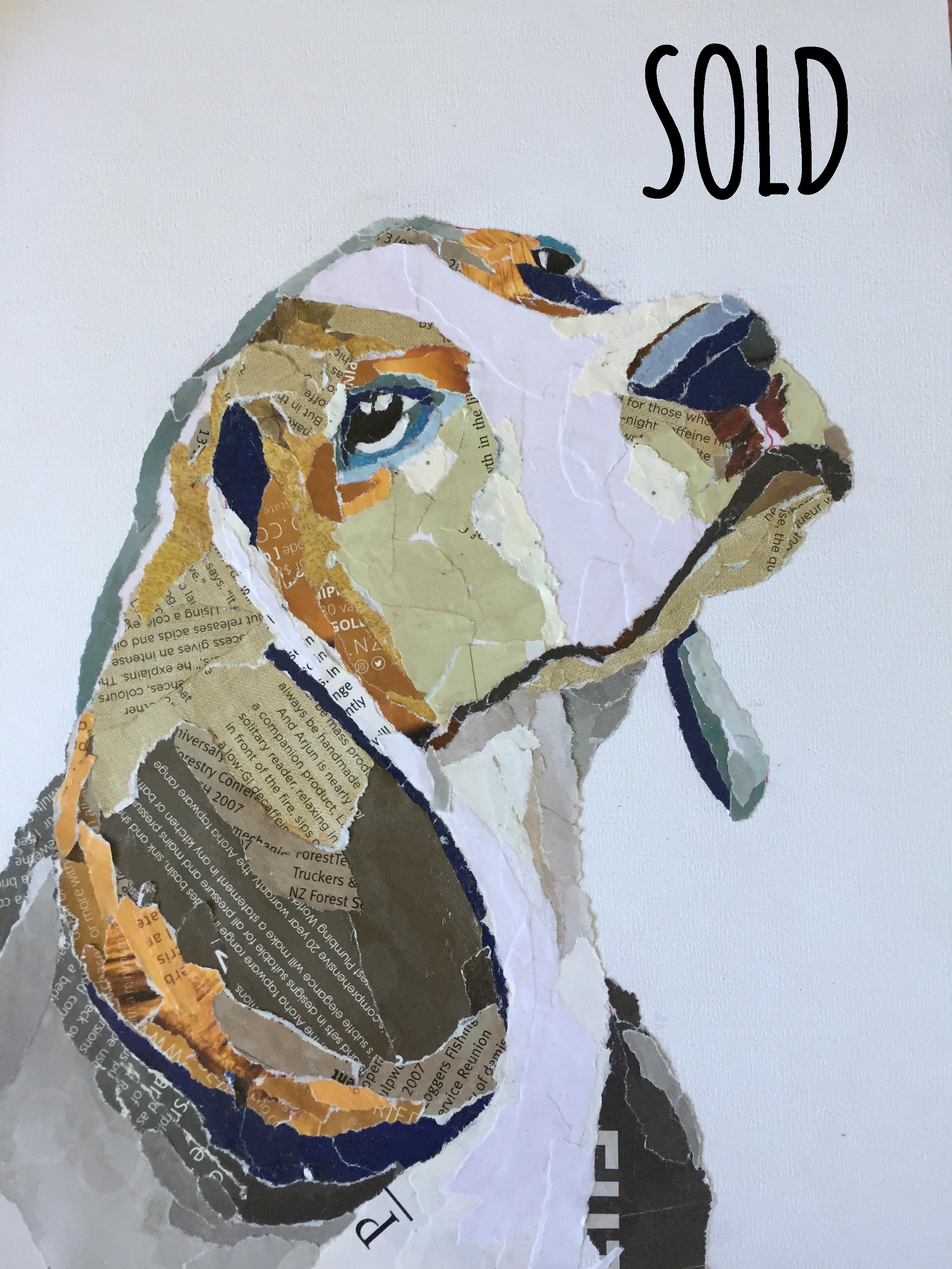 CA1018 Beagle SOLD