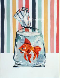 P1091 Fish in bag $135