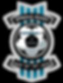 CFBSA Spring Bash Logo.png