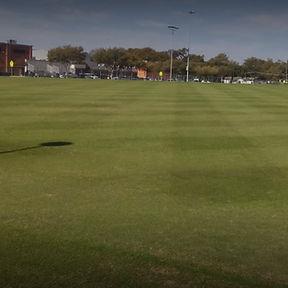 Cox Fields.jpg