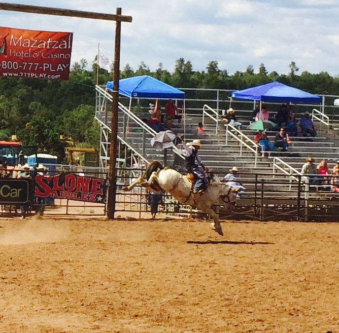AZ High School Rodeo Finals 2015