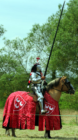 Joust_tall_large
