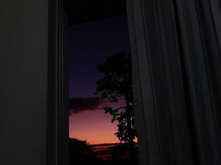 49. Da minha janela