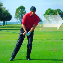 swing fault - forward lunge at lee chiropractic clinic