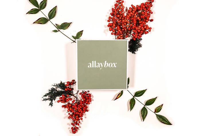 AllayBox_Solo Box.png