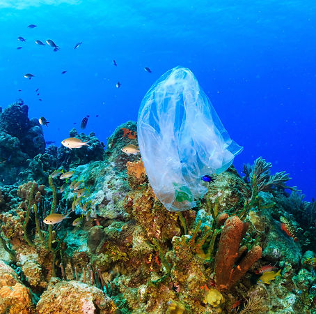 clean_our_ocean-plastic_ocean-sq.jpg
