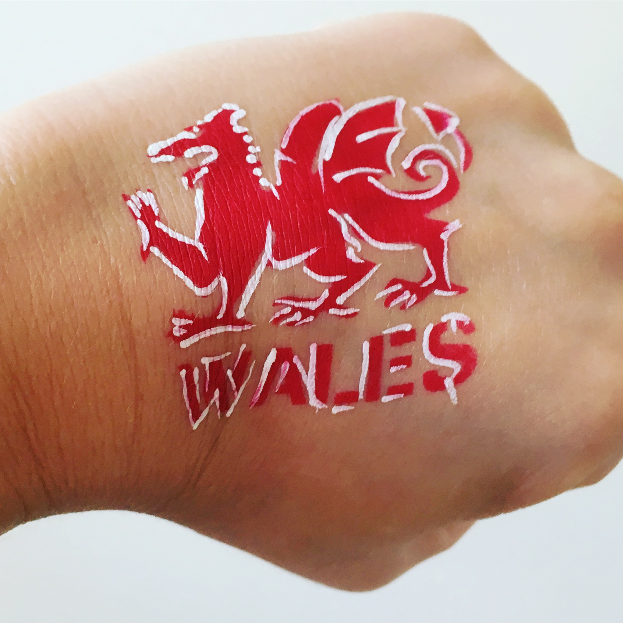 Wales rugby hand paint