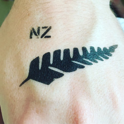 New Zealand rugby paint